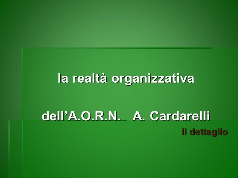 la realtà organizzativa dellA.O.R.N. A. Cardarelli il dettaglio