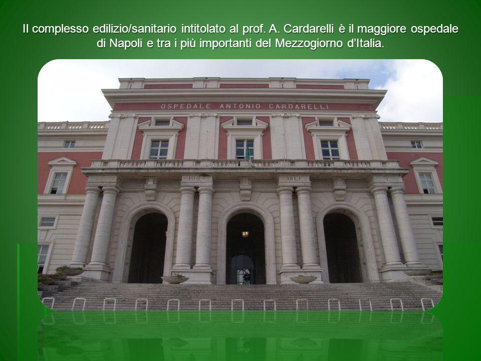 Il contesto dellA.O.R.N.A. Cardarelli di Napoli 50.000 mq.