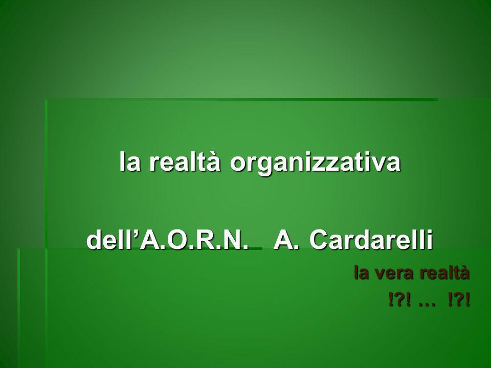 la realtà organizzativa dellA.O.R.N. A. Cardarelli la vera realtà !?! … !?!