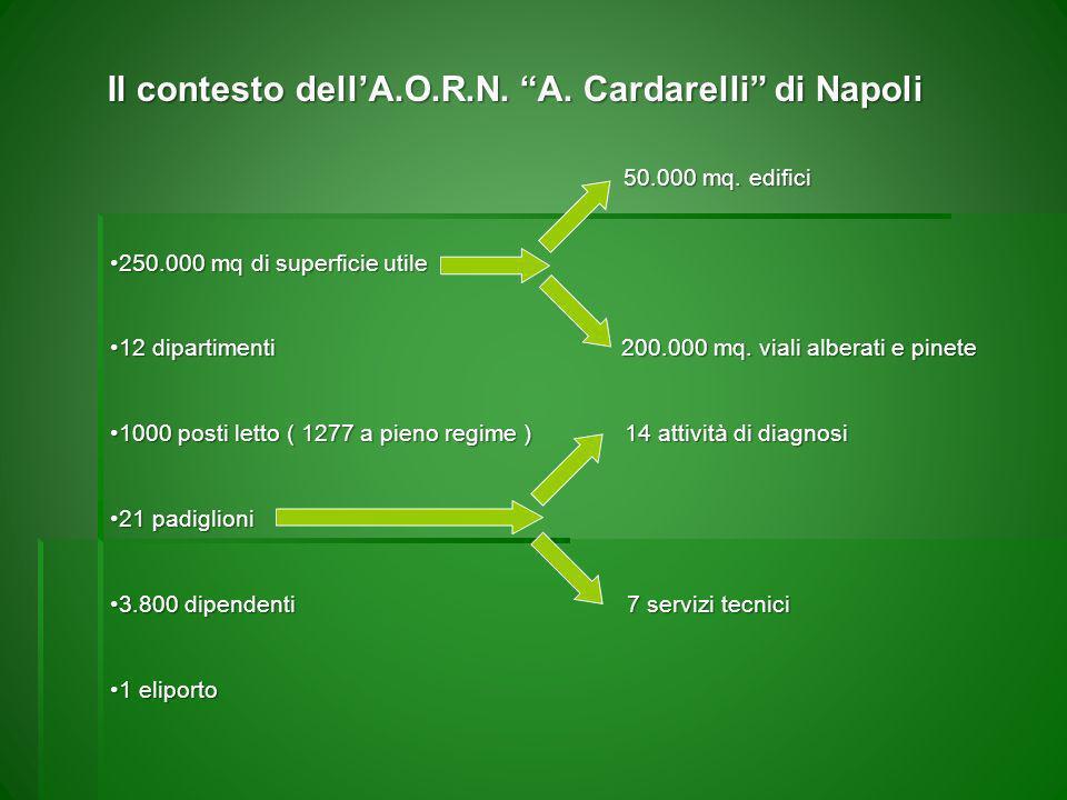 lA.O.R.N. A. Cardarelli – vista dallalto