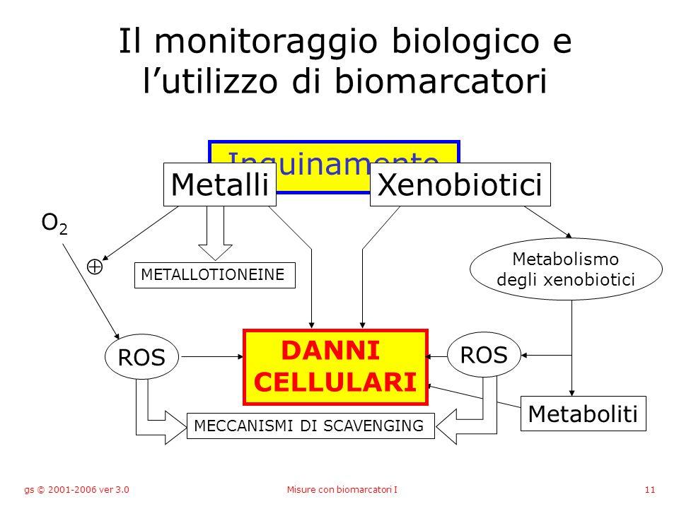 gs © 2001-2006 ver 3.0Misure con biomarcatori I11 Metabolismo degli xenobiotici Metaboliti MECCANISMI DI SCAVENGING Il monitoraggio biologico e lutilizzo di biomarcatori METALLOTIONEINE O2O2 ROS DANNI CELLULARI Inquinamento MetalliXenobiotici ROS