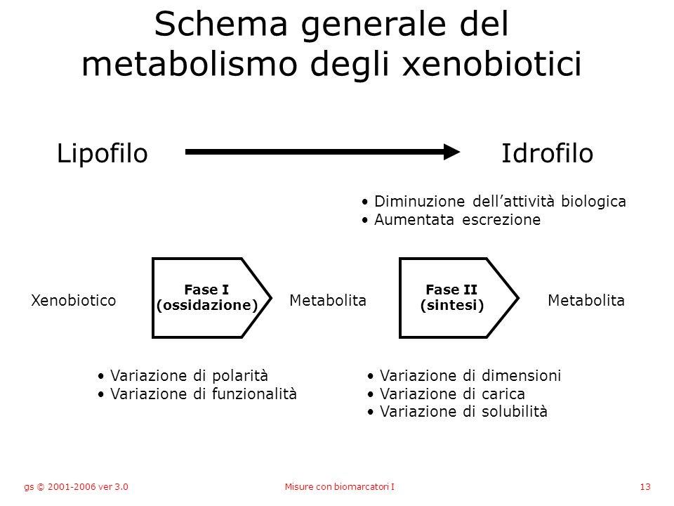 gs © 2001-2006 ver 3.0Misure con biomarcatori I13 Schema generale del metabolismo degli xenobiotici LipofiloIdrofilo XenobioticoMetabolita Fase I (ossidazione) Fase II (sintesi) Variazione di polarità Variazione di funzionalità Variazione di dimensioni Variazione di carica Variazione di solubilità Diminuzione dellattività biologica Aumentata escrezione