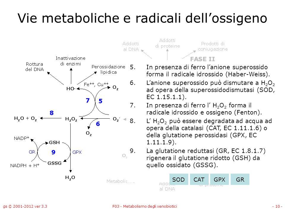 gs © 2001-2012 ver 3.3F03 - Metabolismo degli xenobiotici- 10 - Vie metaboliche e radicali dellossigeno 5.In presenza di ferro lanione superossido for