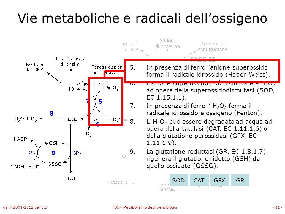 gs © 2001-2012 ver 3.3F03 - Metabolismo degli xenobiotici- 11 - Vie metaboliche e radicali dellossigeno 5.In presenza di ferro lanione superossido for