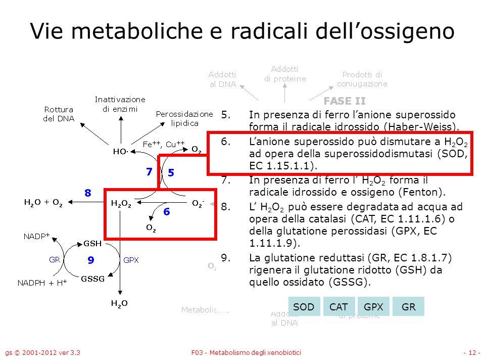 gs © 2001-2012 ver 3.3F03 - Metabolismo degli xenobiotici- 12 - Vie metaboliche e radicali dellossigeno 5.In presenza di ferro lanione superossido for