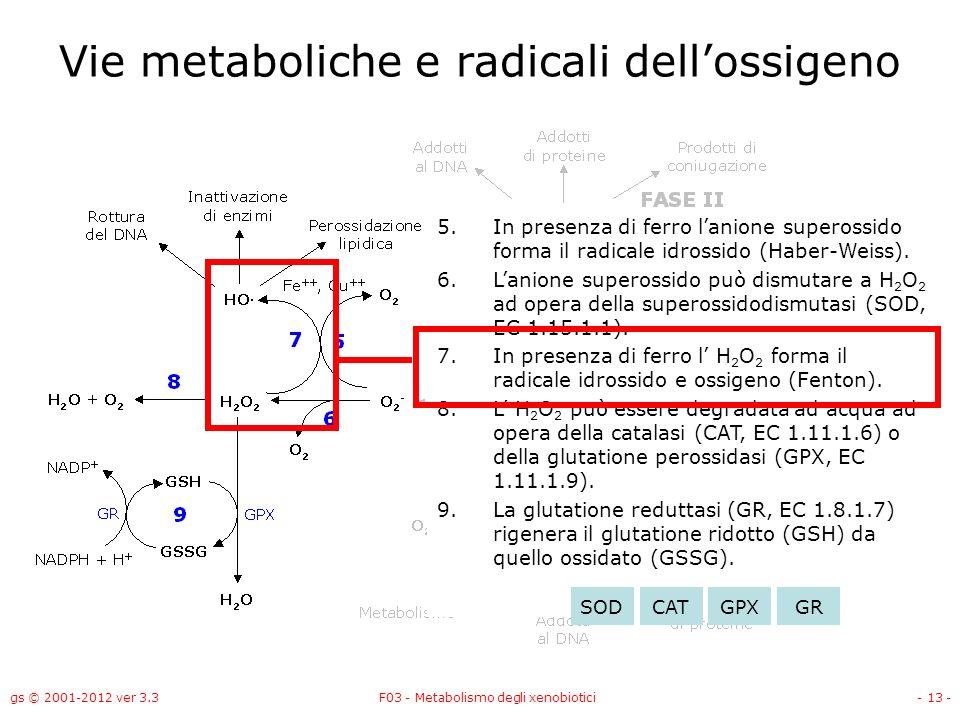gs © 2001-2012 ver 3.3F03 - Metabolismo degli xenobiotici- 13 - Vie metaboliche e radicali dellossigeno 5.In presenza di ferro lanione superossido for