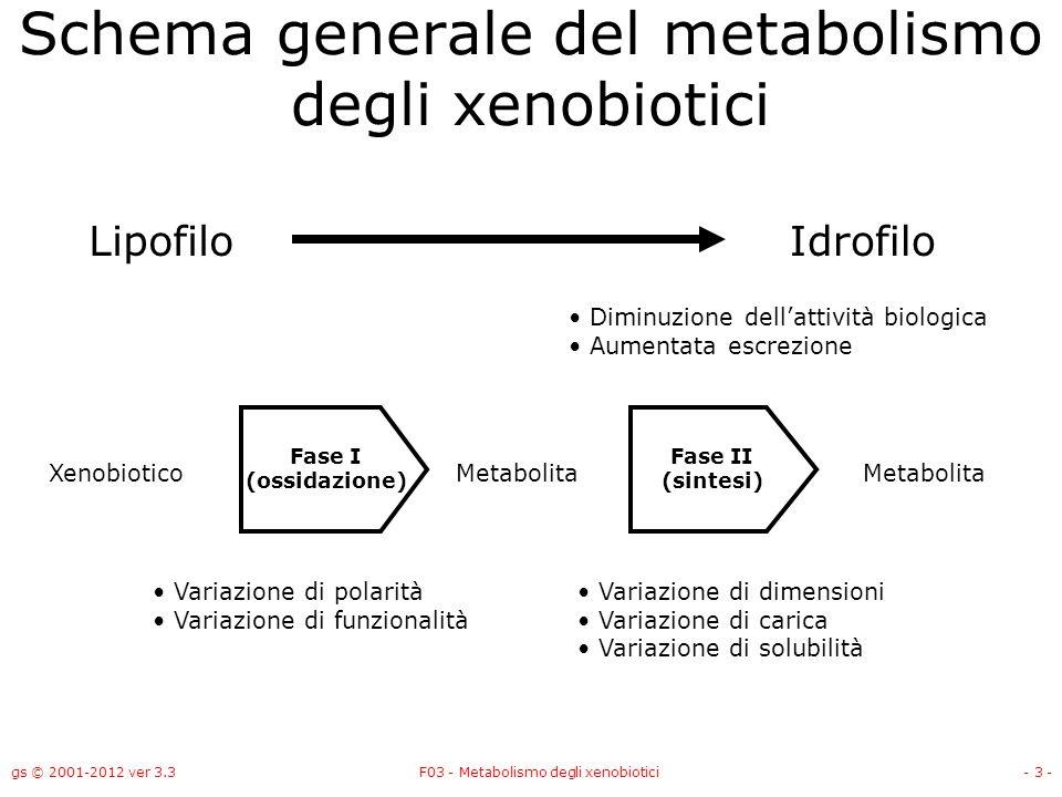 gs © 2001-2012 ver 3.3F03 - Metabolismo degli xenobiotici- 3 - Schema generale del metabolismo degli xenobiotici LipofiloIdrofilo XenobioticoMetabolit