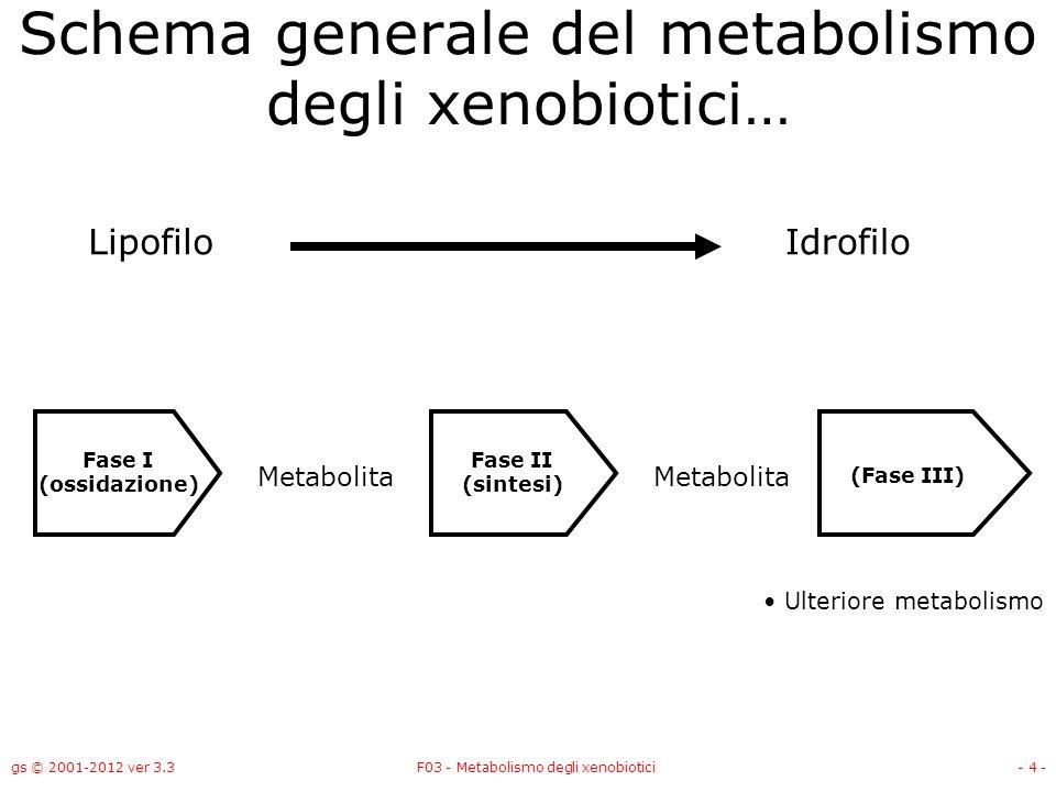 gs © 2001-2012 ver 3.3F03 - Metabolismo degli xenobiotici- 4 - Schema generale del metabolismo degli xenobiotici… LipofiloIdrofilo Metabolita Fase I (