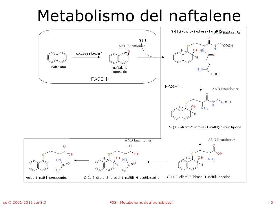 gs © 2001-2012 ver 3.3F03 - Metabolismo degli xenobiotici- 5 - Metabolismo del naftalene
