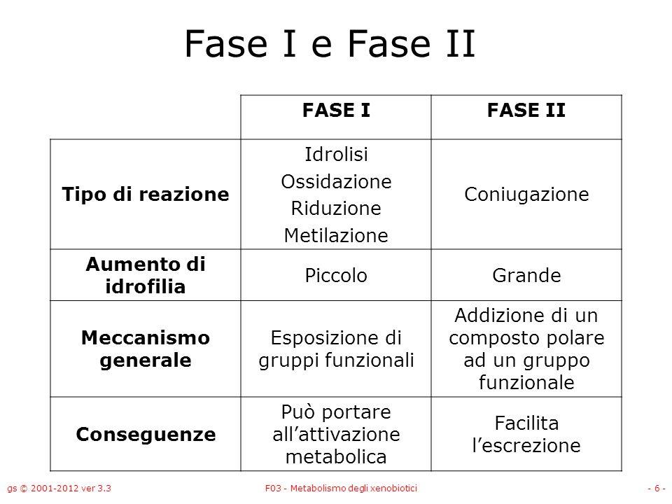 gs © 2001-2012 ver 3.3F03 - Metabolismo degli xenobiotici- 6 - Fase I e Fase II FASE IFASE II Tipo di reazione Idrolisi Ossidazione Riduzione Metilazi