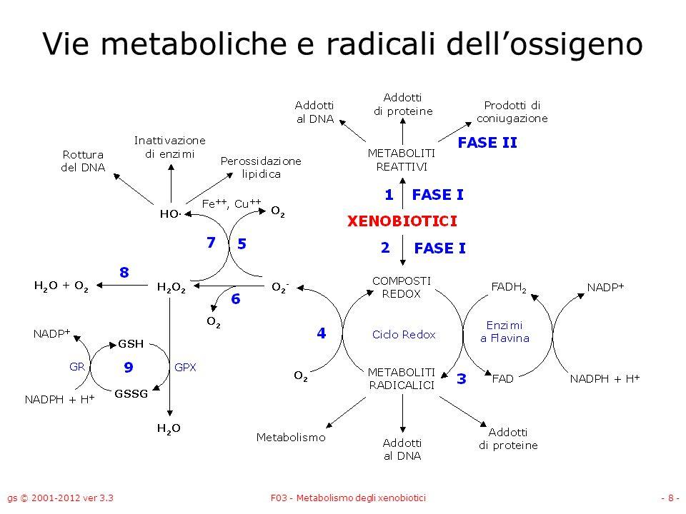 gs © 2001-2012 ver 3.3F03 - Metabolismo degli xenobiotici- 8 - Vie metaboliche e radicali dellossigeno