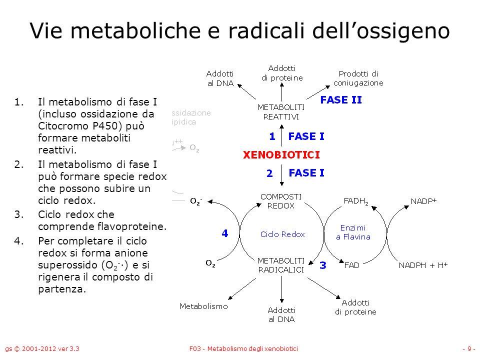 gs © 2001-2012 ver 3.3F03 - Metabolismo degli xenobiotici- 9 - Vie metaboliche e radicali dellossigeno 1.Il metabolismo di fase I (incluso ossidazione