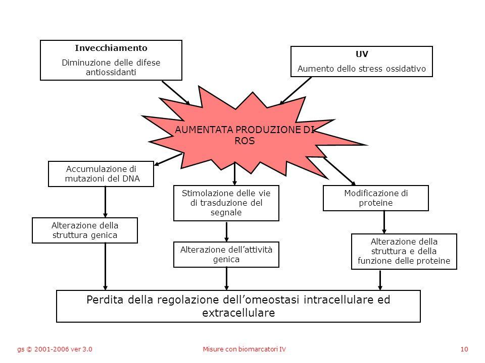 gs © 2001-2006 ver 3.0Misure con biomarcatori IV10 Invecchiamento Diminuzione delle difese antiossidanti UV Aumento dello stress ossidativo AUMENTATA PRODUZIONE DI ROS Accumulazione di mutazioni del DNA Stimolazione delle vie di trasduzione del segnale Modificazione di proteine Alterazione della struttura genica Alterazione dellattività genica Alterazione della struttura e della funzione delle proteine Perdita della regolazione dellomeostasi intracellulare ed extracellulare