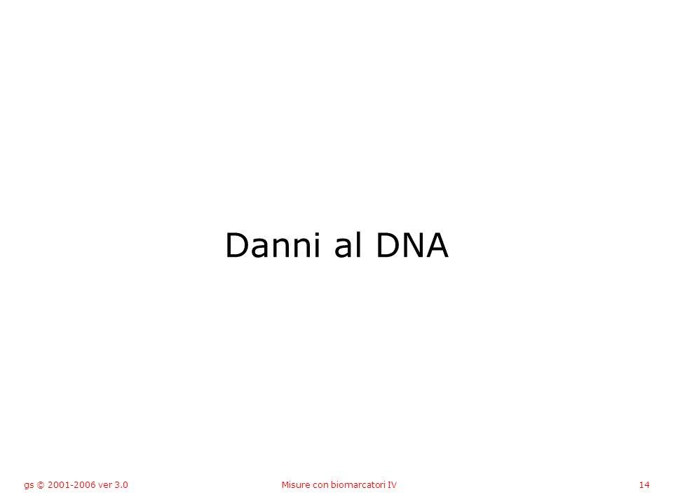 gs © 2001-2006 ver 3.0Misure con biomarcatori IV14 Danni al DNA