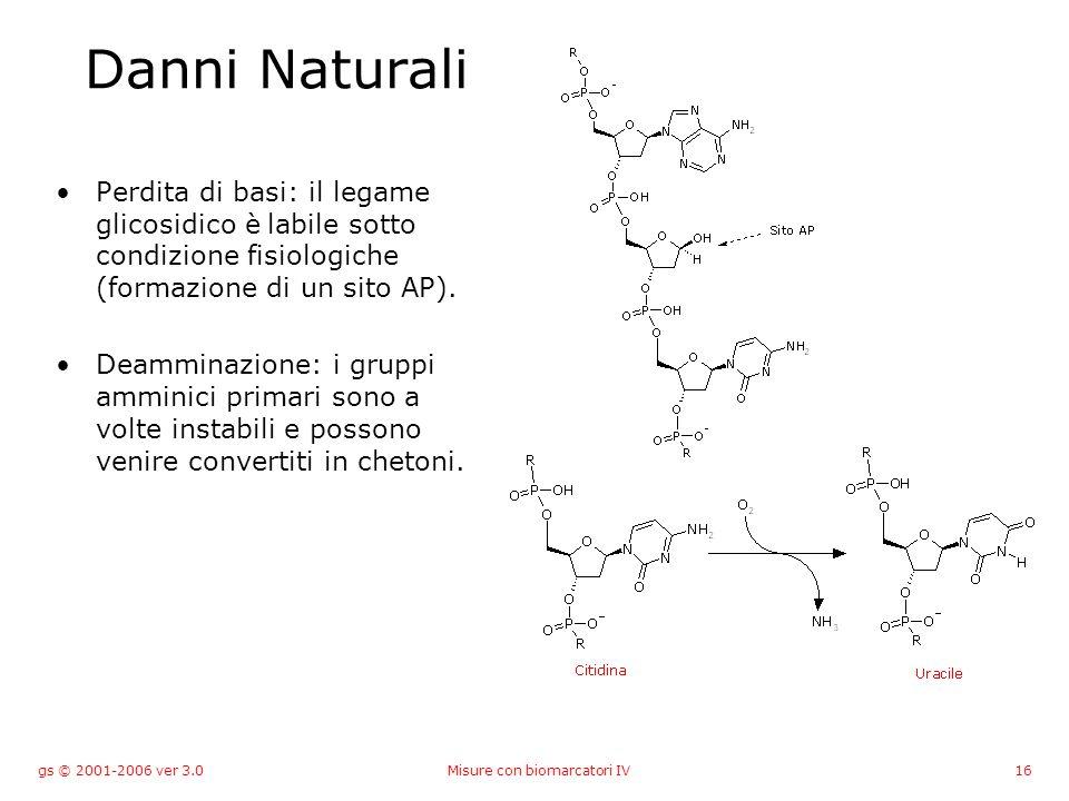 gs © 2001-2006 ver 3.0Misure con biomarcatori IV16 Danni Naturali Perdita di basi: il legame glicosidico è labile sotto condizione fisiologiche (formazione di un sito AP).