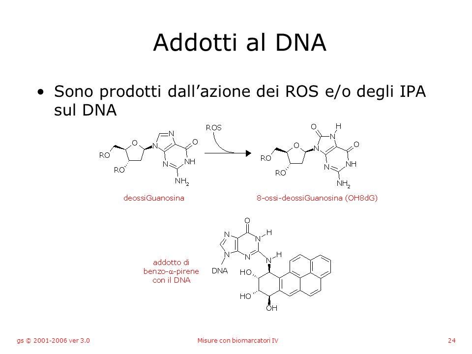 gs © 2001-2006 ver 3.0Misure con biomarcatori IV24 Addotti al DNA Sono prodotti dallazione dei ROS e/o degli IPA sul DNA