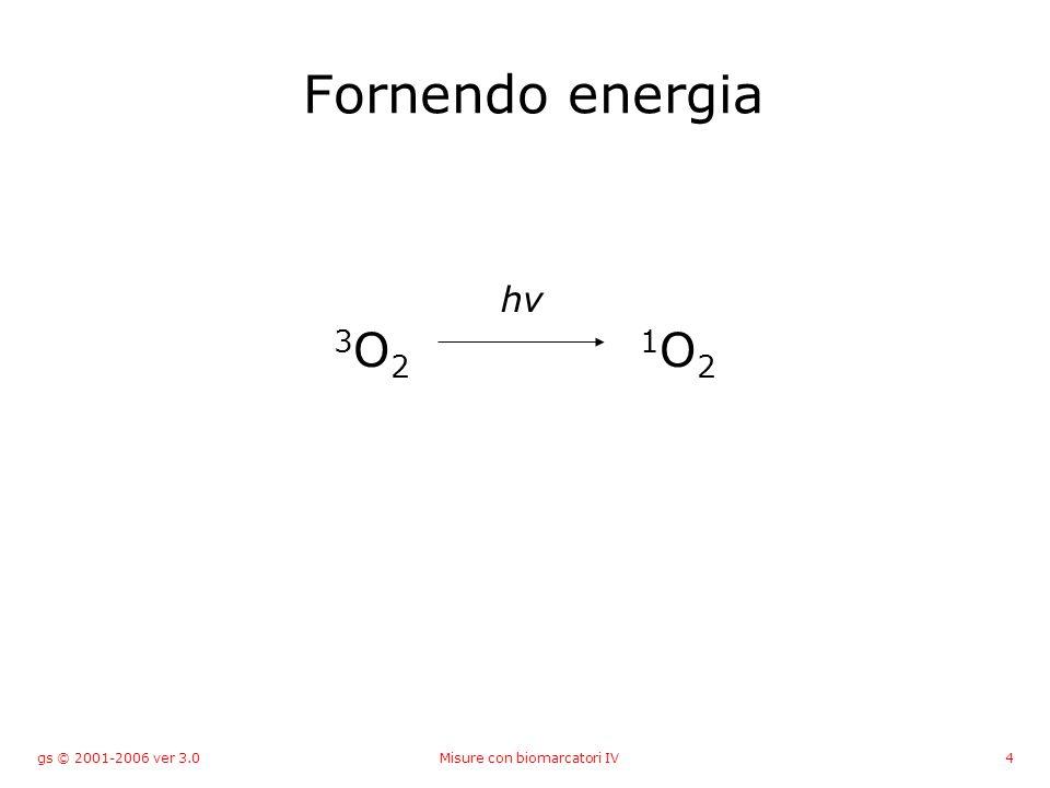 gs © 2001-2006 ver 3.0Misure con biomarcatori IV4 Fornendo energia 3 O 2 1 O 2 hν