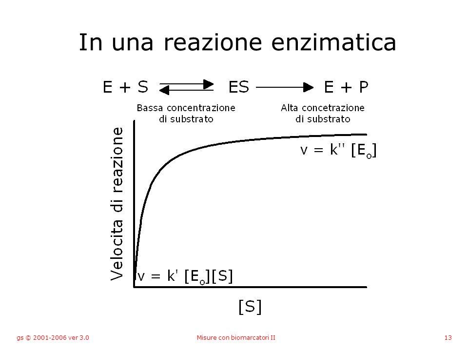 gs © 2001-2006 ver 3.0Misure con biomarcatori II13 In una reazione enzimatica