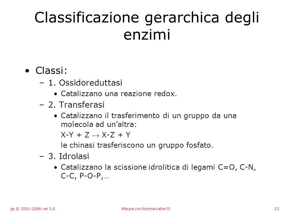 gs © 2001-2006 ver 3.0Misure con biomarcatori II23 Classificazione gerarchica degli enzimi Classi: –1. Ossidoreduttasi Catalizzano una reazione redox.