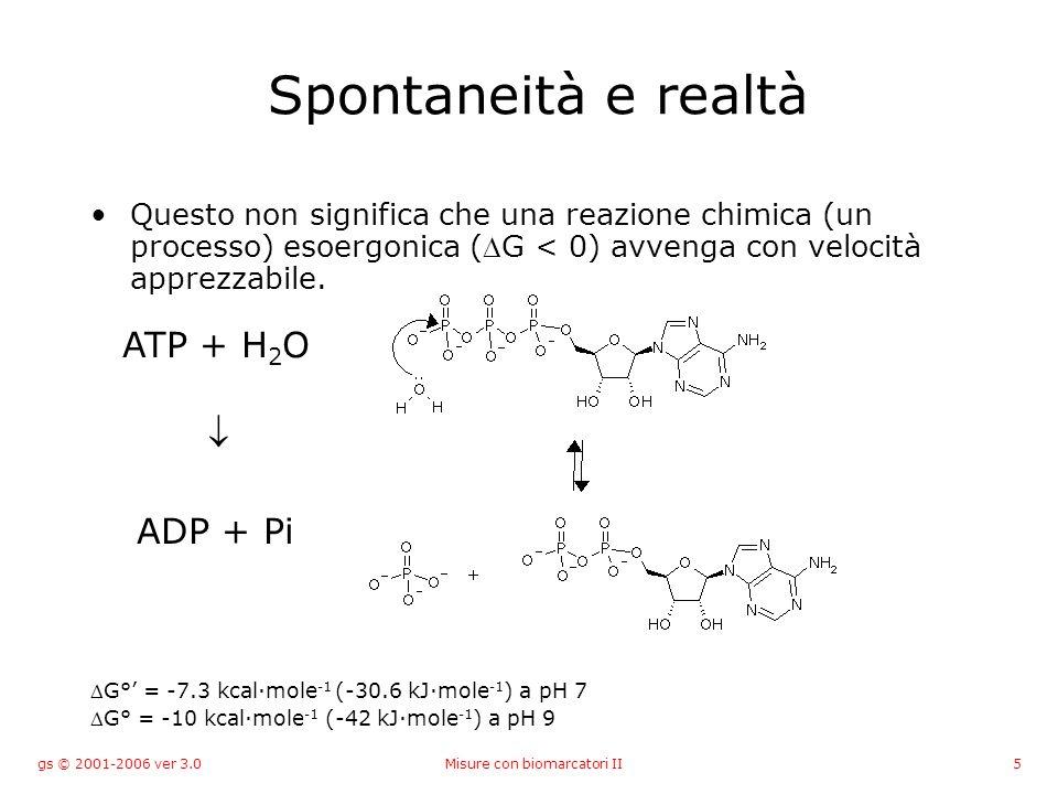gs © 2001-2006 ver 3.0Misure con biomarcatori II5 Spontaneità e realtà Questo non significa che una reazione chimica (un processo) esoergonica (G < 0)
