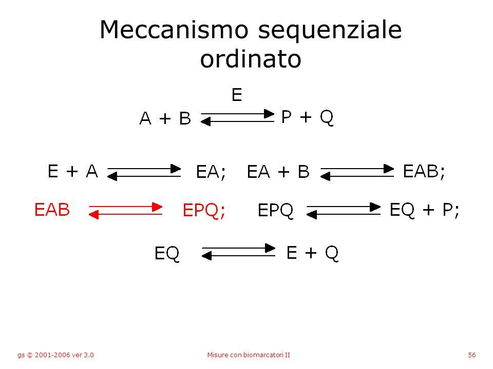 gs © 2001-2006 ver 3.0Misure con biomarcatori II56 Meccanismo sequenziale ordinato
