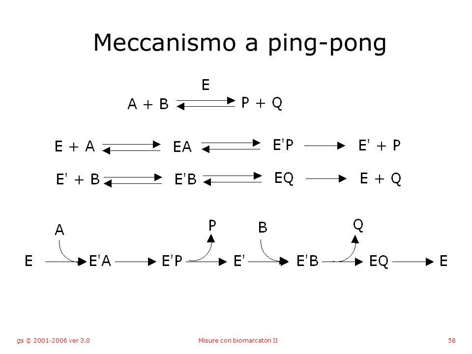 gs © 2001-2006 ver 3.0Misure con biomarcatori II58 Meccanismo a ping-pong