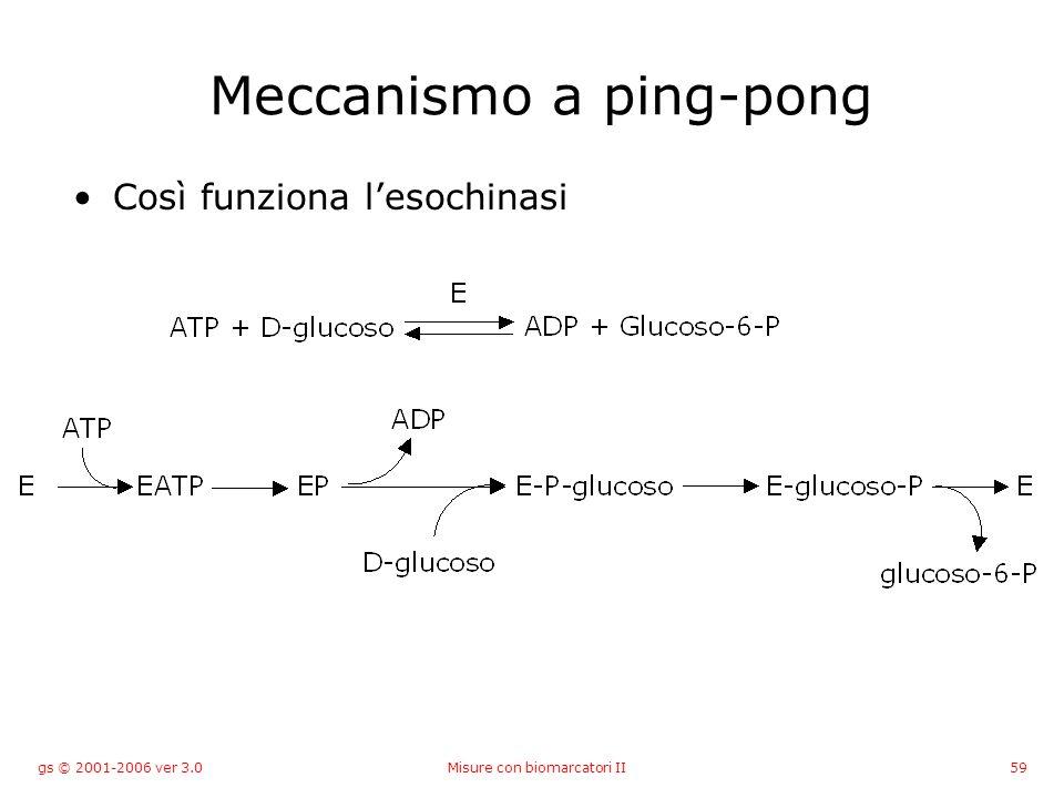 gs © 2001-2006 ver 3.0Misure con biomarcatori II59 Meccanismo a ping-pong Così funziona lesochinasi