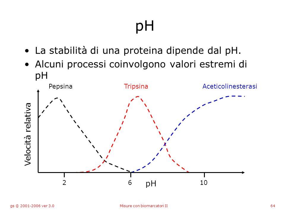 gs © 2001-2006 ver 3.0Misure con biomarcatori II64 pH La stabilità di una proteina dipende dal pH. Alcuni processi coinvolgono valori estremi di pH Ve