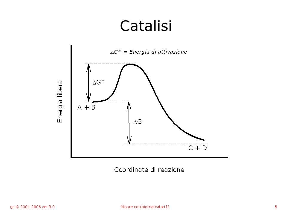 gs © 2001-2006 ver 3.0Misure con biomarcatori II8 Catalisi
