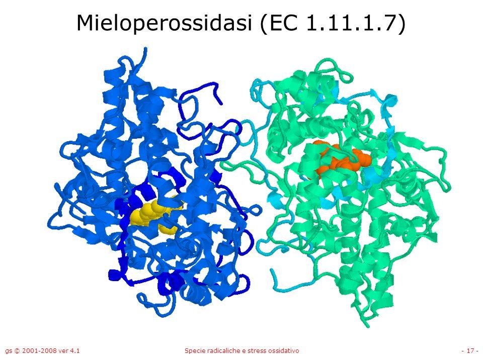 gs © 2001-2008 ver 4.1Specie radicaliche e stress ossidativo- 17 - Mieloperossidasi (EC 1.11.1.7)