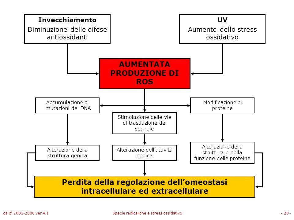 gs © 2001-2008 ver 4.1Specie radicaliche e stress ossidativo- 20 - Invecchiamento Diminuzione delle difese antiossidanti UV Aumento dello stress ossid