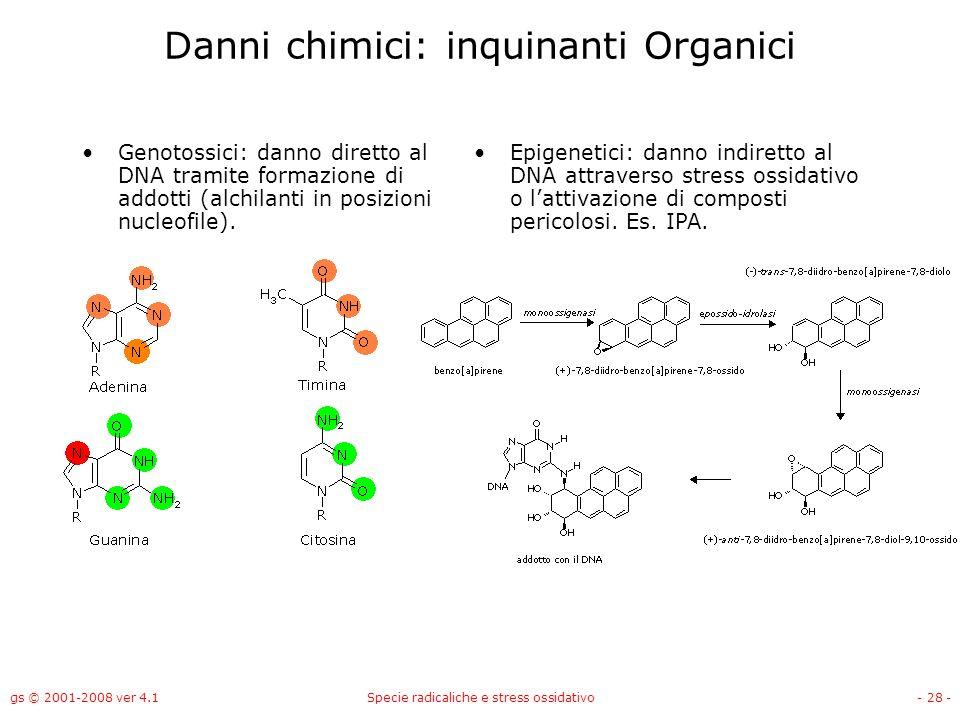 gs © 2001-2008 ver 4.1Specie radicaliche e stress ossidativo- 28 - Danni chimici: inquinanti Organici Genotossici: danno diretto al DNA tramite formaz