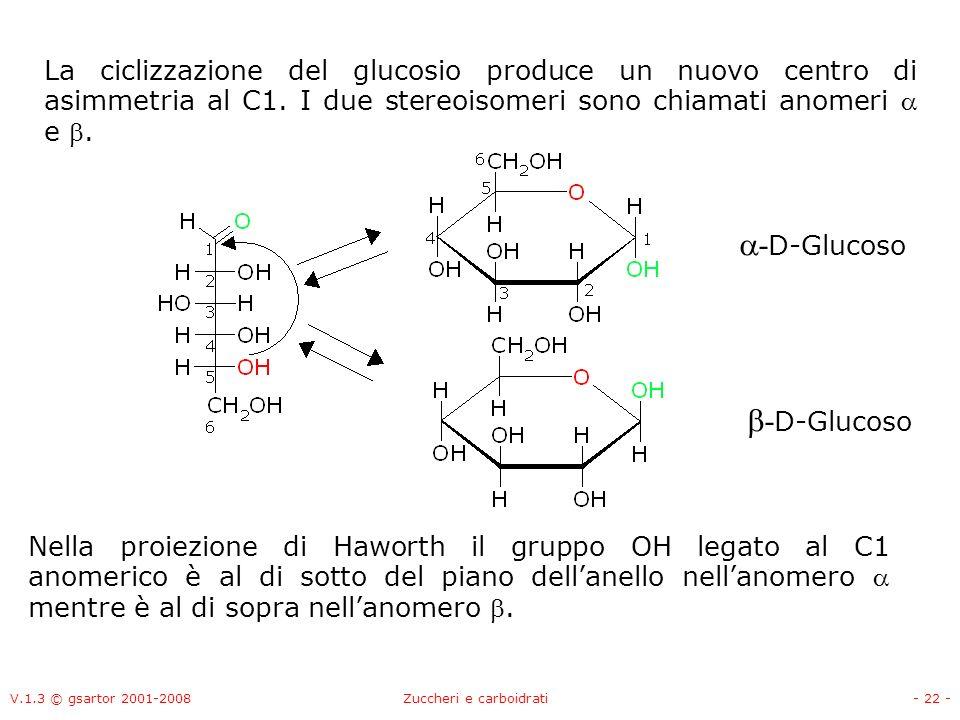 V.1.3 © gsartor 2001-2008Zuccheri e carboidrati- 23 - A causa degli angoli di legame del carbonio sp 3 la configurazione che uno zucchero in forma ciclica assume può essere a sedia o barca (come i cicloalcani).
