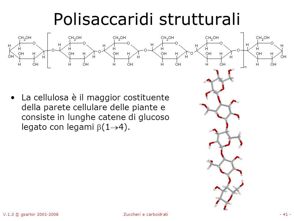 V.1.3 © gsartor 2001-2008Zuccheri e carboidrati- 42 - Polisaccaridi strutturali Cellulosa: ogni residuo di glucoso è ruotato di 180° rispetto al precedente, ciò porta alla formazioni di legami idrogeno tra catene affiancate per formare fibre.