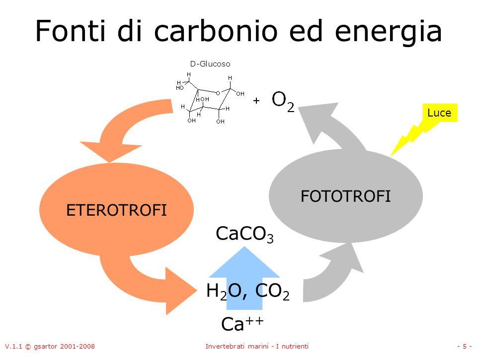 V.1.1 © gsartor 2001-2008Invertebrati marini - I nutrienti- 5 - Fonti di carbonio ed energia FOTOTROFI ETEROTROFI H 2 O, CO 2 Luce Ca ++ CaCO 3