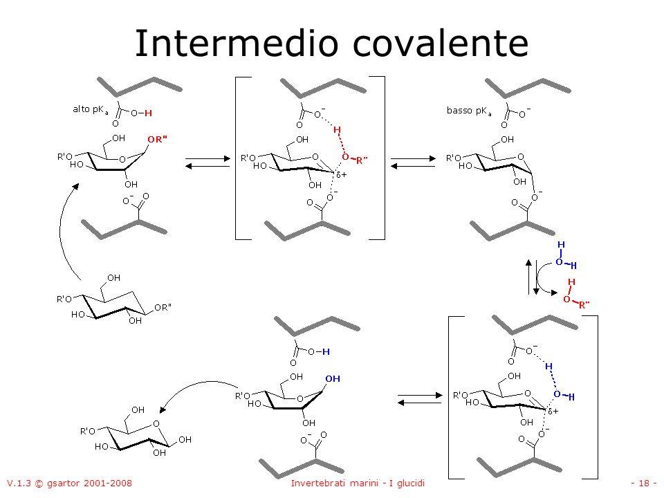 V.1.3 © gsartor 2001-2008Invertebrati marini - I glucidi- 18 - Intermedio covalente