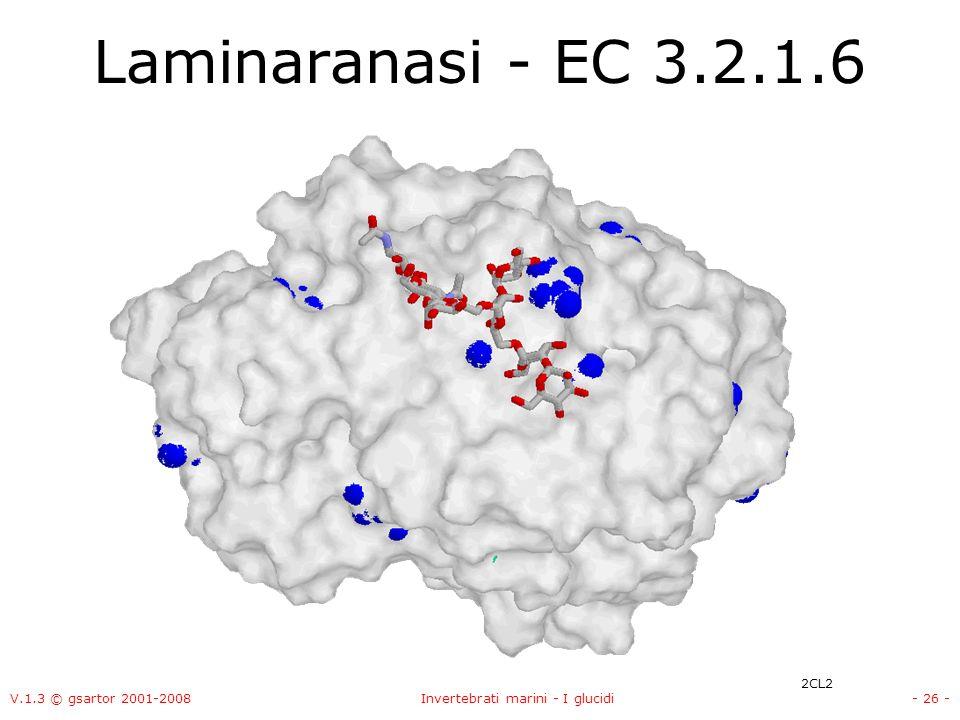 V.1.3 © gsartor 2001-2008Invertebrati marini - I glucidi- 26 - Laminaranasi - EC 3.2.1.6 2CL2