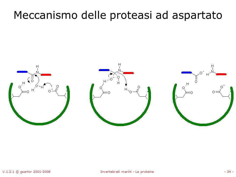 V.1.2.1 © gsartor 2001-2008Invertebrati marini - Le proteine- 34 - Meccanismo delle proteasi ad aspartato