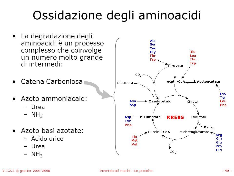 V.1.2.1 © gsartor 2001-2008Invertebrati marini - Le proteine- 40 - Ossidazione degli aminoacidi La degradazione degli aminoacidi è un processo comples
