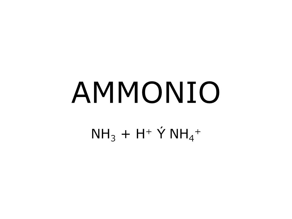 AMMONIO NH 3 + H + Ý NH 4 +
