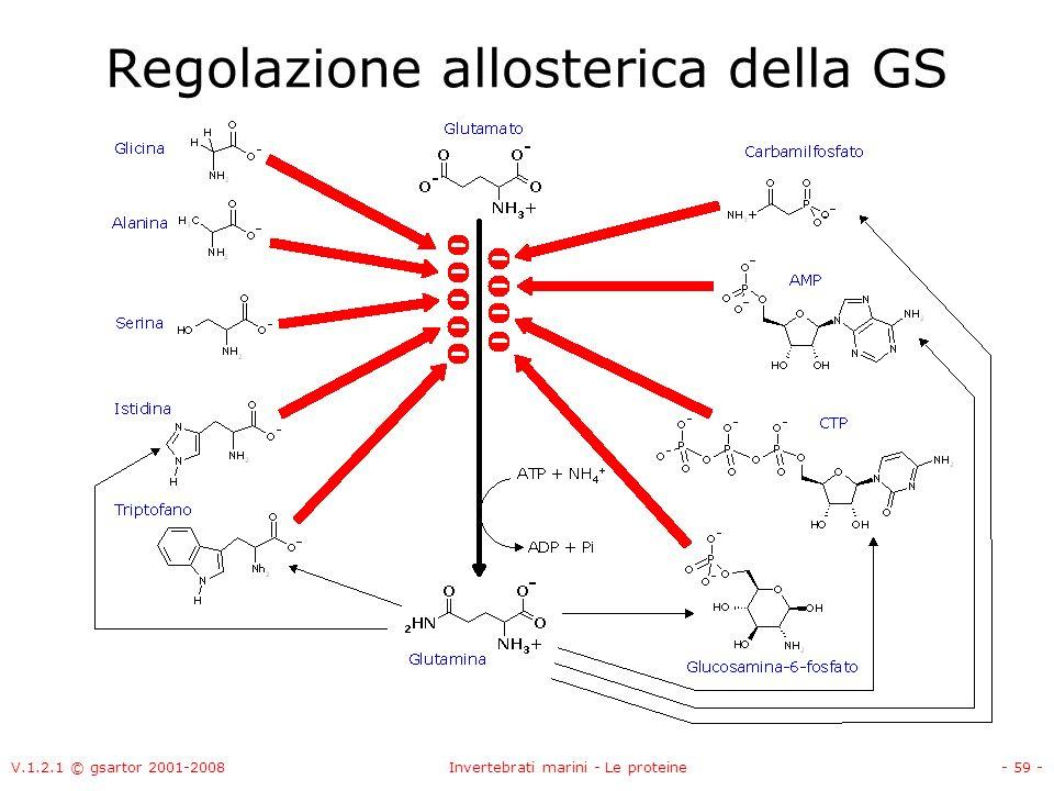 V.1.2.1 © gsartor 2001-2008Invertebrati marini - Le proteine- 59 - Regolazione allosterica della GS