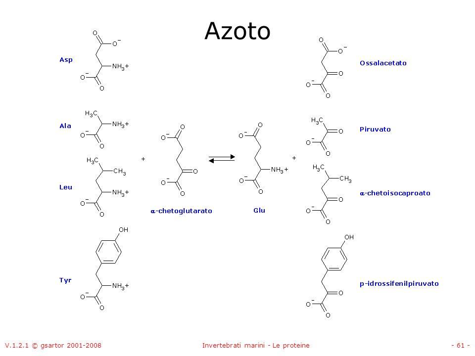 V.1.2.1 © gsartor 2001-2008Invertebrati marini - Le proteine- 61 - Azoto