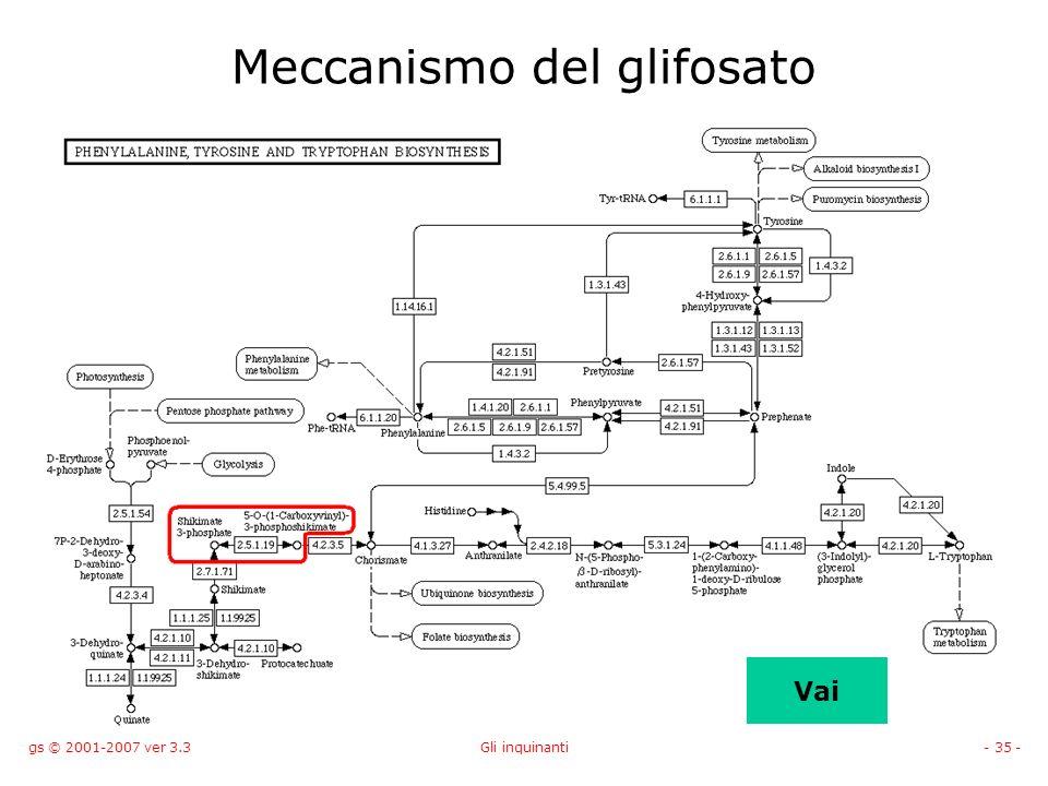 gs © 2001-2007 ver 3.3Gli inquinanti- 35 - Vai Meccanismo del glifosato