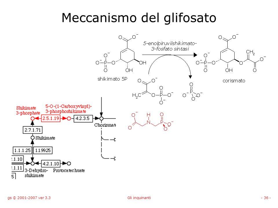 gs © 2001-2007 ver 3.3Gli inquinanti- 36 - Meccanismo del glifosato