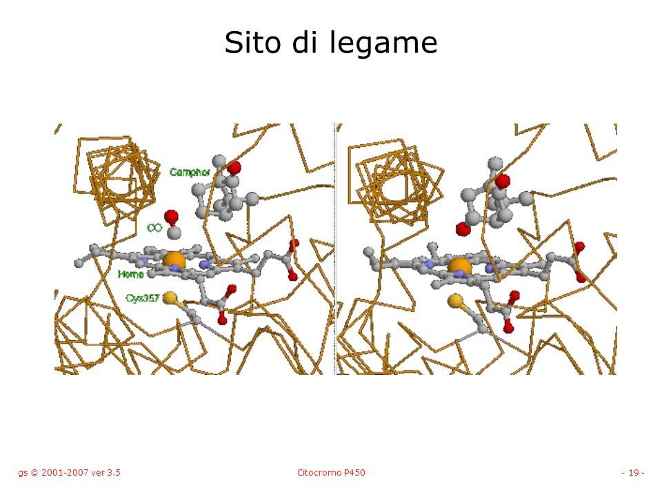 gs © 2001-2007 ver 3.5Citocromo P450- 19 - Sito di legame