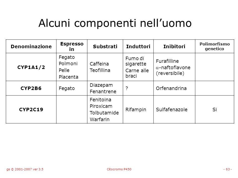 gs © 2001-2007 ver 3.5Citocromo P450- 63 - Alcuni componenti nelluomo Denominazione Espresso in SubstratiInduttoriInibitori Polimorfismo genetico CYP1