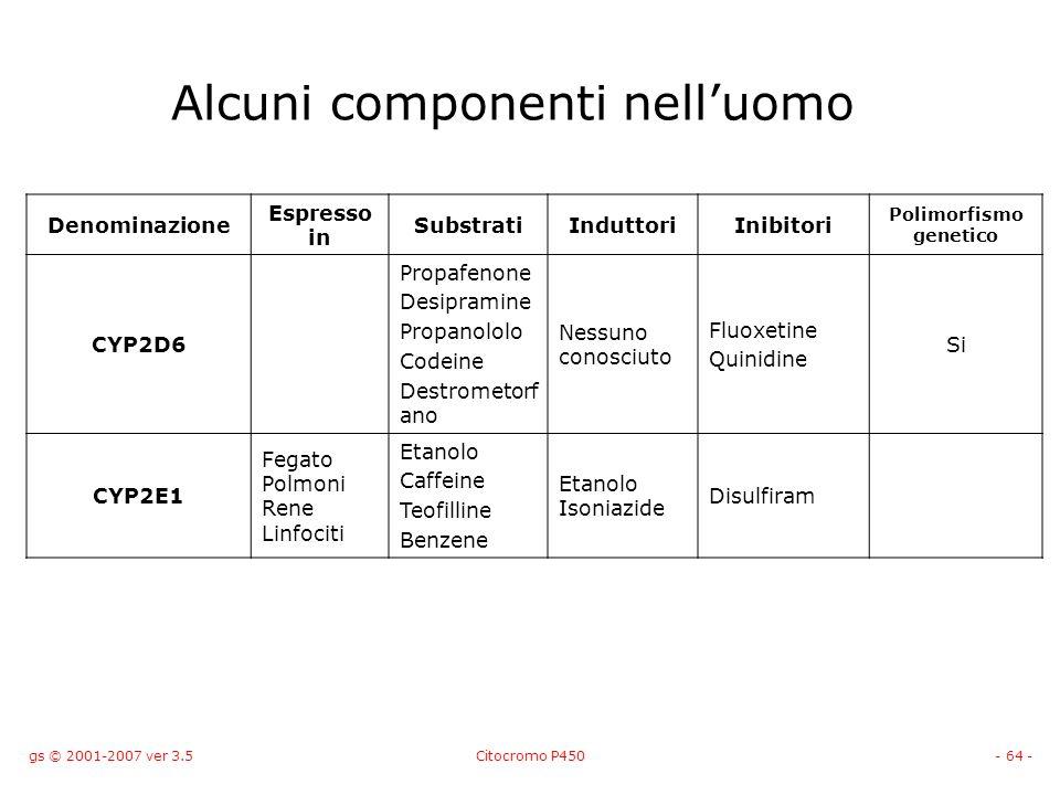 gs © 2001-2007 ver 3.5Citocromo P450- 64 - Alcuni componenti nelluomo Denominazione Espresso in SubstratiInduttoriInibitori Polimorfismo genetico CYP2