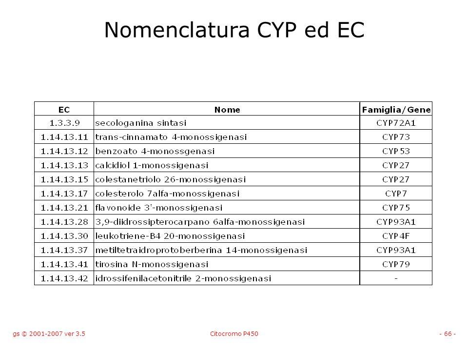 gs © 2001-2007 ver 3.5Citocromo P450- 66 - Nomenclatura CYP ed EC