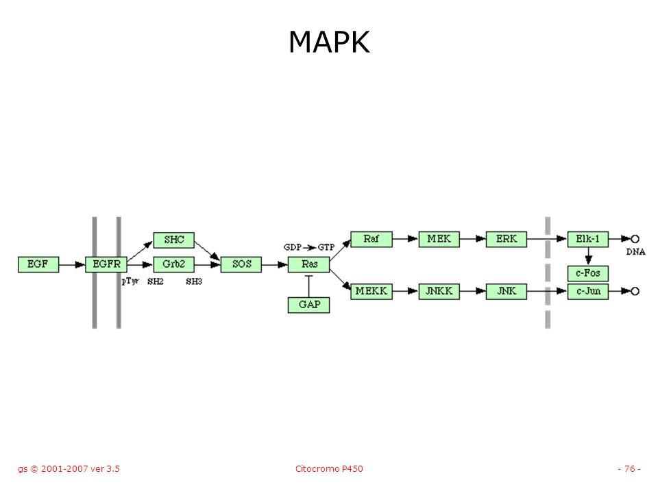 gs © 2001-2007 ver 3.5Citocromo P450- 76 - MAPK