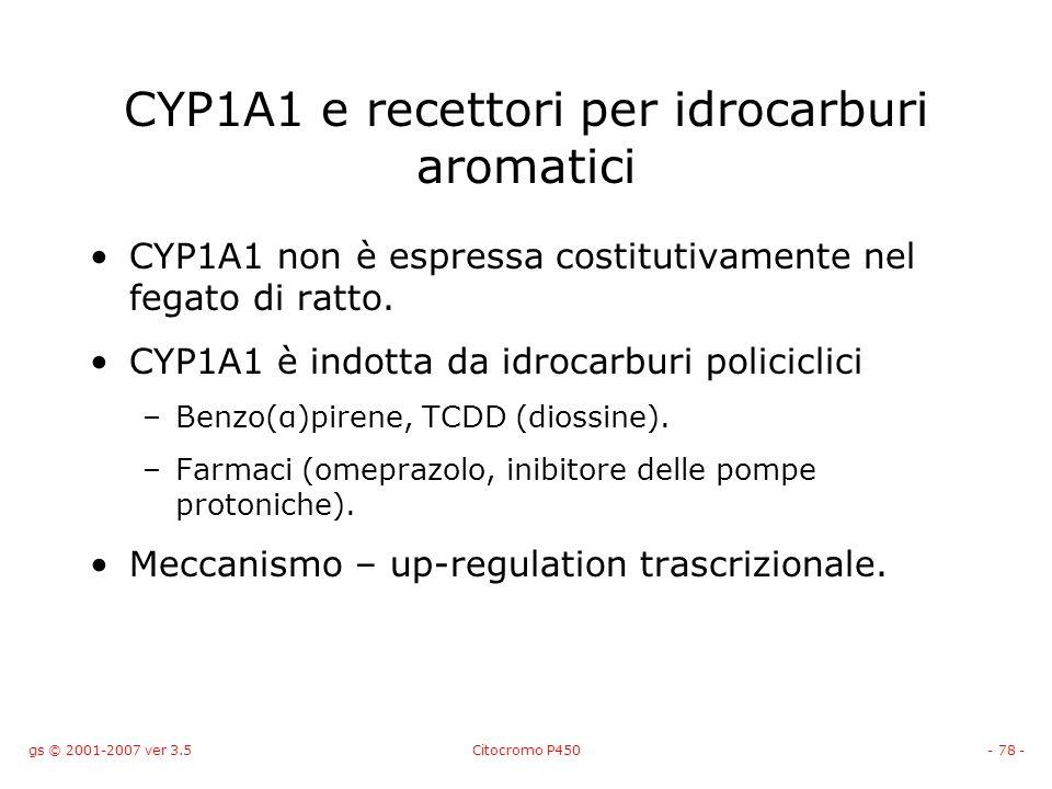 gs © 2001-2007 ver 3.5Citocromo P450- 78 - CYP1A1 e recettori per idrocarburi aromatici CYP1A1 non è espressa costitutivamente nel fegato di ratto. CY